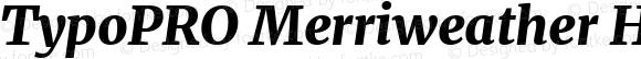 TypoPRO Merriweather Heavy Italic
