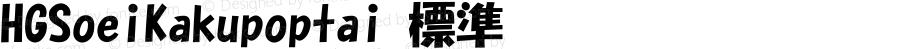 HGSoeiKakupoptai 標準 Version 3.01