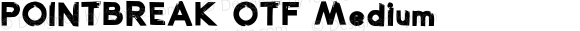 POINTBREAK OTF Medium Version 2