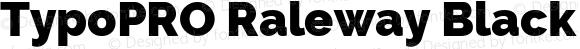 TypoPRO Raleway Black