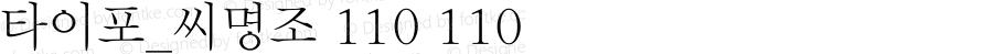 타이포_씨명조 110 110 Version 1.0.0