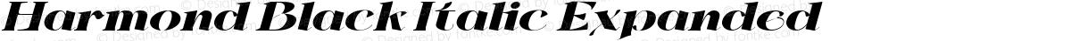 Harmond Black Italic Expanded