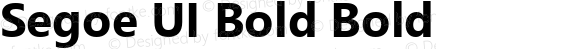 Segoe UI Bold Bold