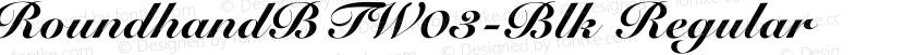 RoundhandBTW03-Blk Regular Preview Image