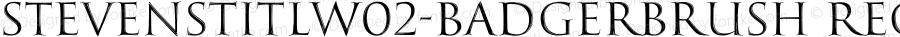 StevensTitlW02-BadgerBrush Regular Version 1.00