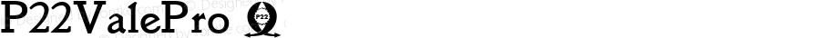 P22ValePro ☞ Version 3.000;com.myfonts.easy.ihof.p22-vale.pro.wfkit2.version.46Dy