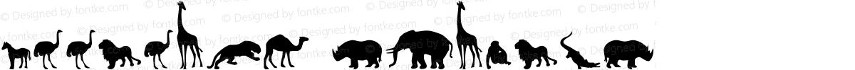 Zoologic Regular