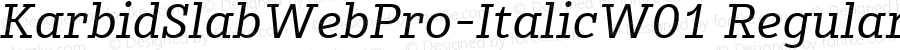 KarbidSlabWebPro-ItalicW01 Regular Version 7.504