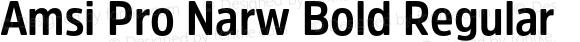 Amsi Pro Narw Bold Regular Version 1.40
