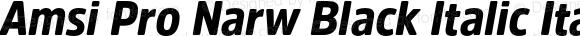 Amsi Pro Narw Black Italic Italic Version 1.40