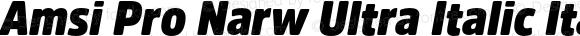Amsi Pro Narw Ultra Italic Italic Version 1.40