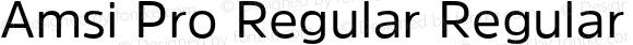 Amsi Pro Regular Regular Version 1.40