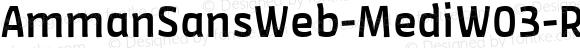 AmmanSansWeb-MediW03-Rg Regular Version 7.504