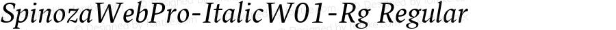SpinozaWebPro-ItalicW01-Rg Regular Version 7.504