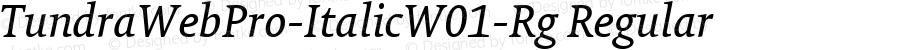 TundraWebPro-ItalicW01-Rg Regular Version 7.504