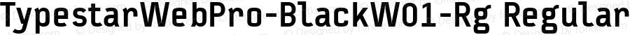 TypestarWebPro-BlackW01-Rg Regular Version 7.504