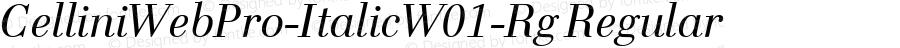 CelliniWebPro-ItalicW01-Rg Regular Version 7.504