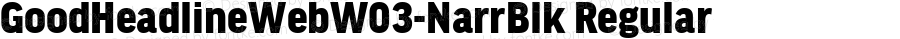 GoodHeadlineWebW03-NarrBlk Regular Version 7.504
