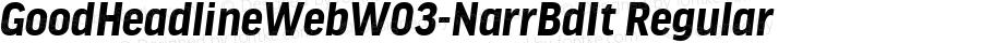 GoodHeadlineWebW03-NarrBdIt Regular Version 7.504