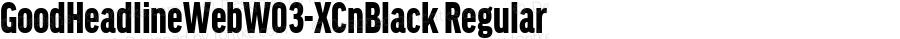 GoodHeadlineWebW03-XCnBlack Regular Version 7.504