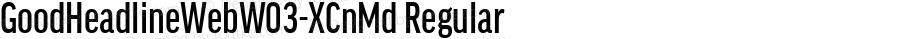 GoodHeadlineWebW03-XCnMd Regular Version 7.504