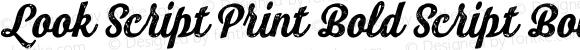 Look Script Print Bold Script Bold Version 1.000;PS 001.001;hotconv 1.0.56