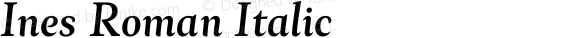 Ines Roman Italic Version 3.001