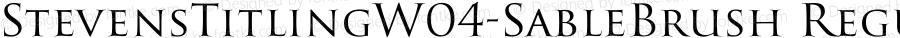 StevensTitlingW04-SableBrush Regular Version 1.00