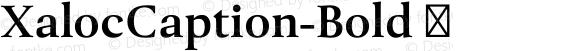 XalocCaption-Bold ☞