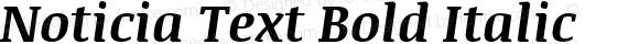Noticia Text Bold Italic