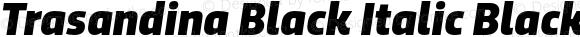 Trasandina Black Italic Black Italic