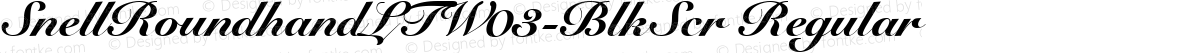 SnellRoundhandLTW03-BlkScr Regular