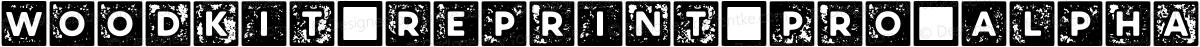 Woodkit Reprint Pro Alphabet B Regular