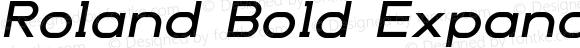 Roland Bold Expanded Italic