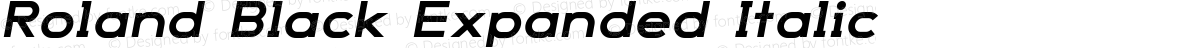 Roland Black Expanded Italic