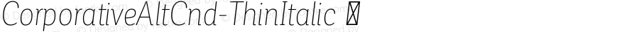 ☞Corporative Alt Cnd Thin Italic