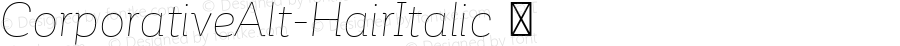 ☞Corporative Alt Hair Italic