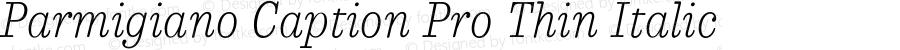 ParmigianoCaptionPro-ThinIta