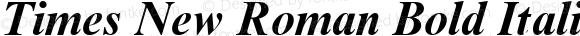 Times New Roman Bold Italic Version 1.0 - November 1992