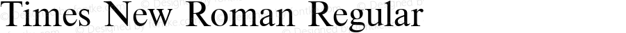 Times New Roman Regular 3.1