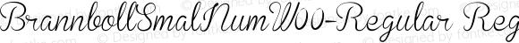 BrannbollSmalNumW00-Regular