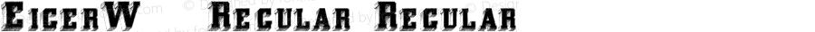 EigerW90-Regular Regular Version 1.00