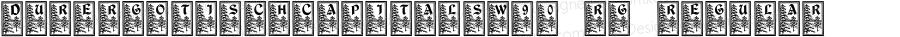DurerGotischCapitalsW90-Rg Regular Version 1.00