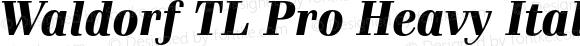 Waldorf TL Pro Heavy Italic