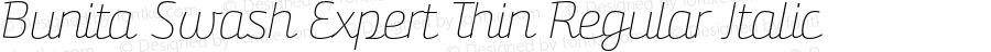 Bunita Swash Expert Thin Regular Italic Version 1.141