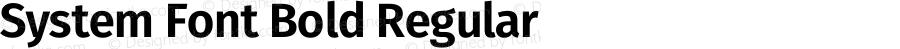System Font Bold Regular Version 4.106;PS 004.106;hotconv 1.0.70;makeotf.lib2.5.58329