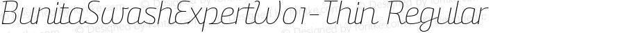 BunitaSwashExpertW01-Thin Regular Version 1.141