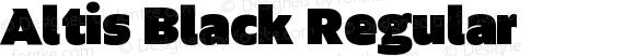 Altis Black Regular Version 1.000