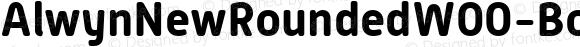 AlwynNewRoundedW00-Bold Regular Version 1.00