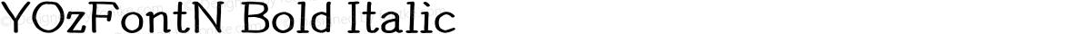 YOzFontN Bold Italic